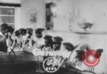 Image of German Shepherd pups Germany, 1952, second 1 stock footage video 65675045417