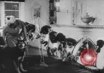 Image of German Shepherd pups Germany, 1952, second 12 stock footage video 65675045417