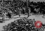 Image of battlefield salvage Korea, 1953, second 7 stock footage video 65675045457