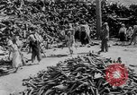 Image of battlefield salvage Korea, 1953, second 8 stock footage video 65675045457