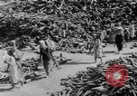 Image of battlefield salvage Korea, 1953, second 10 stock footage video 65675045457