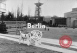 Image of International dog show Berlin Germany, 1954, second 2 stock footage video 65675045472