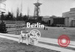 Image of International dog show Berlin Germany, 1954, second 3 stock footage video 65675045472