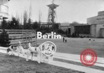 Image of International dog show Berlin Germany, 1954, second 4 stock footage video 65675045472
