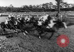 Image of 78th Annual Steeplechase Czechoslovakia, 1967, second 12 stock footage video 65675045491
