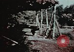 Image of 91st Bomb Group England, 1943, second 10 stock footage video 65675045579