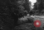 Image of German soldiers France, 1944, second 8 stock footage video 65675045596