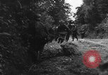 Image of German soldiers France, 1944, second 12 stock footage video 65675045596