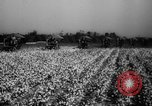 Image of United States farmers Mississippi United States USA, 1944, second 7 stock footage video 65675045600