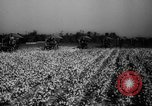 Image of United States farmers Mississippi United States USA, 1944, second 8 stock footage video 65675045600