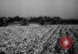 Image of United States farmers Mississippi United States USA, 1944, second 10 stock footage video 65675045600