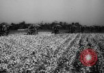 Image of United States farmers Mississippi United States USA, 1944, second 11 stock footage video 65675045600