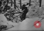 Image of Battle of the Bulge Belgium, 1945, second 10 stock footage video 65675045608