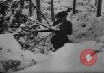 Image of Battle of the Bulge Belgium, 1945, second 12 stock footage video 65675045608