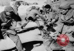 Image of army dogs United States USA, 1945, second 11 stock footage video 65675045614