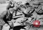 Image of army dogs United States USA, 1945, second 12 stock footage video 65675045614
