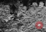 Image of United States troops France, 1944, second 12 stock footage video 65675045629