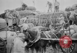 Image of supplies France, 1916, second 11 stock footage video 65675045755