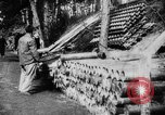 Image of Allied powers Barleux France, 1916, second 9 stock footage video 65675045764