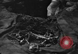 Image of Palawan Massacre victims recovered Palawan Philippines, 1945, second 8 stock footage video 65675045829