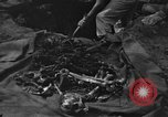 Image of Palawan Massacre victims recovered Palawan Philippines, 1945, second 9 stock footage video 65675045829