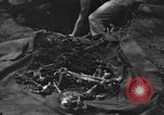 Image of Palawan Massacre victims recovered Palawan Philippines, 1945, second 11 stock footage video 65675045829