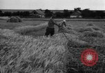 Image of Ukraine farmers Ukraine, 1943, second 8 stock footage video 65675045849