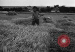 Image of Ukraine farmers Ukraine, 1943, second 9 stock footage video 65675045849