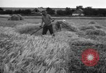 Image of Ukraine farmers Ukraine, 1943, second 12 stock footage video 65675045849