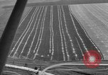 Image of aerial view Ukraine, 1943, second 12 stock footage video 65675045873
