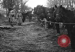 Image of cossacks Galicia Ukraine, 1916, second 3 stock footage video 65675045906