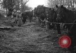 Image of cossacks Galicia Ukraine, 1916, second 4 stock footage video 65675045906