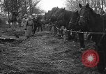 Image of cossacks Galicia Ukraine, 1916, second 5 stock footage video 65675045906