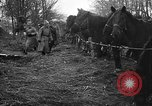 Image of cossacks Galicia Ukraine, 1916, second 6 stock footage video 65675045906