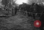 Image of cossacks Galicia Ukraine, 1916, second 7 stock footage video 65675045906