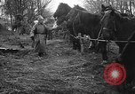 Image of cossacks Galicia Ukraine, 1916, second 10 stock footage video 65675045906