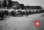 Image of German supply wagons East Prussia, 1915, second 10 stock footage video 65675045930