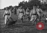Image of dogs of war Vosges France, 1917, second 2 stock footage video 65675045966
