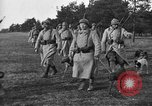 Image of dogs of war Vosges France, 1917, second 3 stock footage video 65675045966