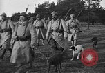 Image of dogs of war Vosges France, 1917, second 4 stock footage video 65675045966