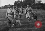 Image of dogs of war Vosges France, 1917, second 5 stock footage video 65675045966