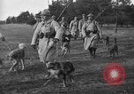 Image of dogs of war Vosges France, 1917, second 7 stock footage video 65675045966