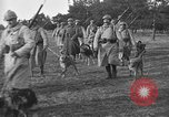 Image of dogs of war Vosges France, 1917, second 8 stock footage video 65675045966