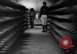 Image of ammunition factory United States USA, 1941, second 3 stock footage video 65675046027