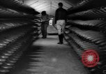 Image of ammunition factory United States USA, 1941, second 4 stock footage video 65675046027