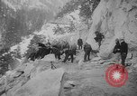 Image of Going-to-the-Sun road Montana USA, 1927, second 2 stock footage video 65675046095