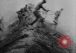 Image of Outbreaks of World War from 1918 to 1940 Europe, 1940, second 11 stock footage video 65675046108