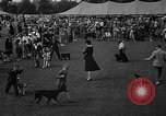Image of Westchester Kennel Club Fixture Rye New York USA, 1940, second 9 stock footage video 65675046156