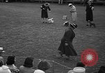 Image of Westchester Kennel Club Fixture Rye New York USA, 1940, second 10 stock footage video 65675046156