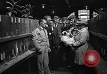 Image of Canadian people Toronto Ontario Canada, 1940, second 12 stock footage video 65675046157